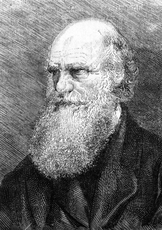 Čarlzas Darvinas