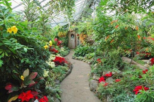 Žiemos sodai: sprendimas norintiems praplėsti gyvenamąją erdvę
