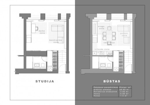 36 kv.m. erdvė Vilniuje: ir butas, ir biuras