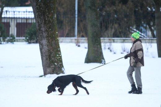 Pasivaikščiojimas su šuniu