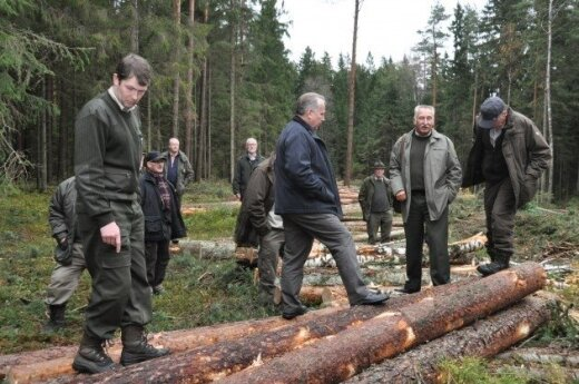 Eglės šakų galima paprašyti miškininkų