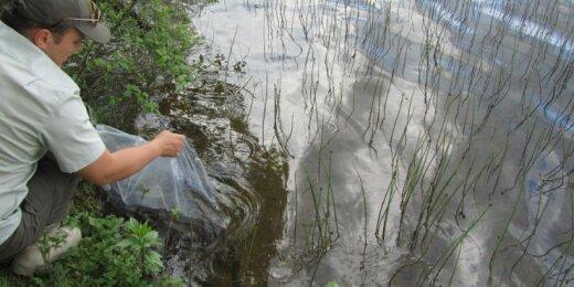 Vandnes telkinių įžuvinimas