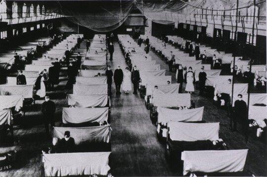 Mokslininkai gripo virusą jau aptinka net žuvyse ir neatmeta naujos pandemijos tikimybės: kada ir kodėl kyla grėsmė žmonėms?