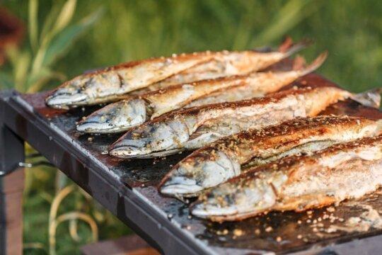 Tokiems eksperimentams pasiryžtų ne visi: ką privalu žinoti apie žuvį net jos nemėgstantiems