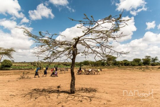 Kenija, Masajai