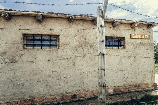 Išdavikų žmonų lagerio prižiūrėtojai tenkindavo šlykščiausias aistras: išrengtos nuogai ir nuskustos plikai, kentėjo viską