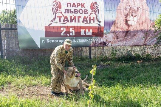 """<span style=""""color: #ff0000;"""">KRYMAS</span>. Žygis su liūtais už Krymą sulaukė tikrai rusiškos pabaigos"""