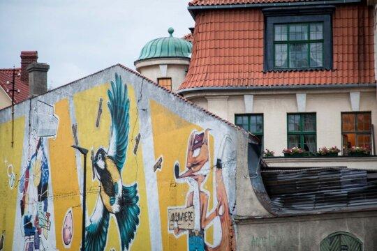 Балтийские каникулы Жени. Где самая европейская Европа, и чей кролик?