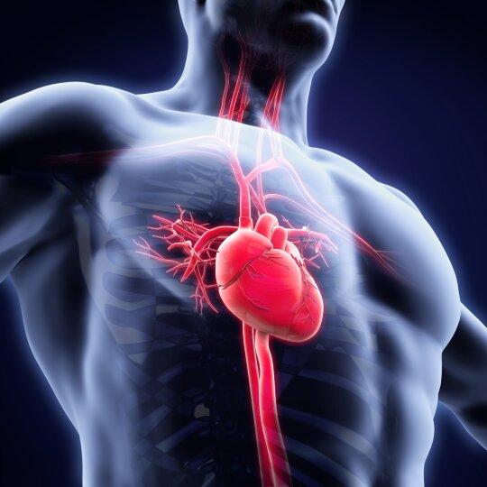 Save laikė sveiku, o patekus į reanimaciją – pluoštas ligų: tyrimai, kurie gali išgelbėti jūsų gyvybę