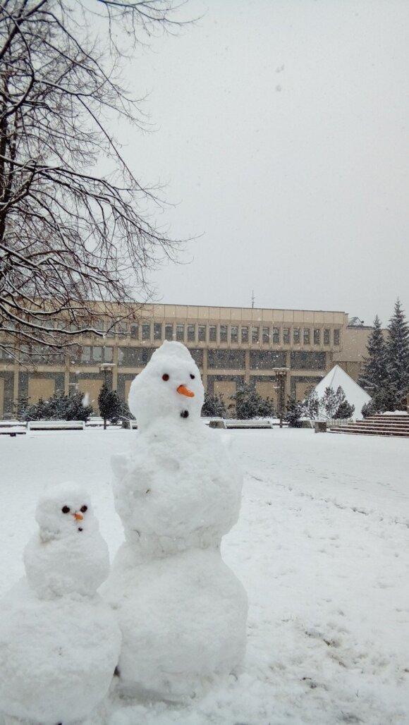 Andrius Vaišnys. Ar Seimas turi teisę klausti, bet neturi?