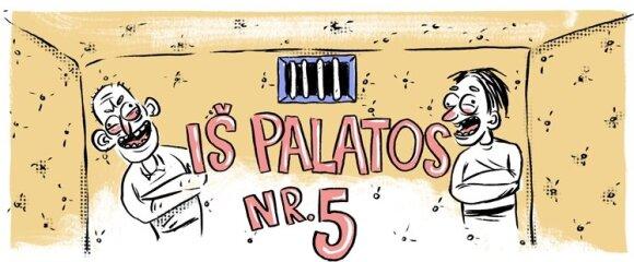 5 palata