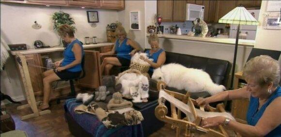 Viktorija iš savo šuns ėmė gaminti siūlus