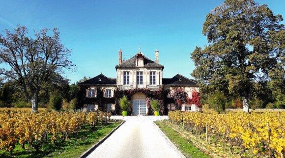 Vynuogynų keliais po rudenėjančią Burgundiją