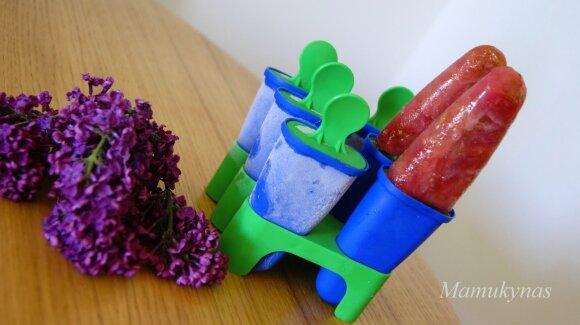 Gaivūs naminiai ledai iš rabarbarų