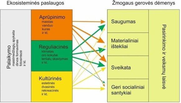 Ekosistemos paslaugos