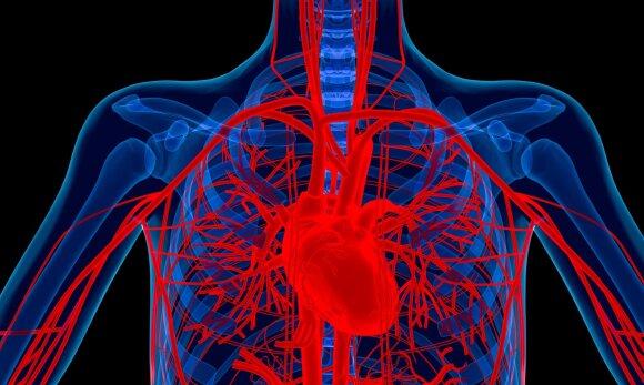 Kardiologas kreipiasi į sergančius širdies ir kraujagyslių ligomis: turite laikytis 10 pagrindinių taisyklių