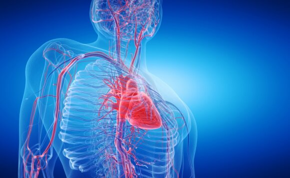 Profesorius Šerpytis: 4 veiksniai, kurie turi didžiausią įtaką infarktui ir insultui
