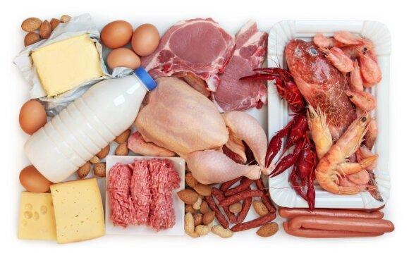 Riebus ir baltyminis maistas