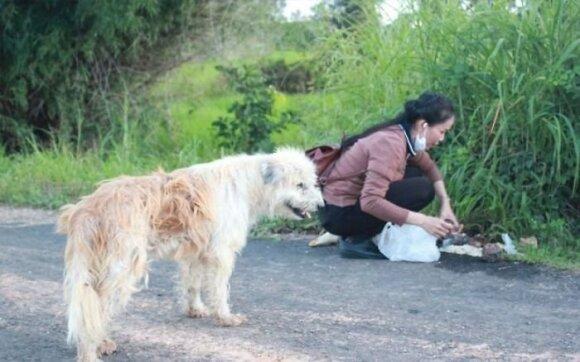 Prie degalinės paliktas šunelis šeimininkų laukė 4 metus