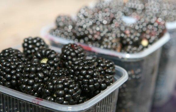 Kokius vitaminų lobius savyje slepia uogos