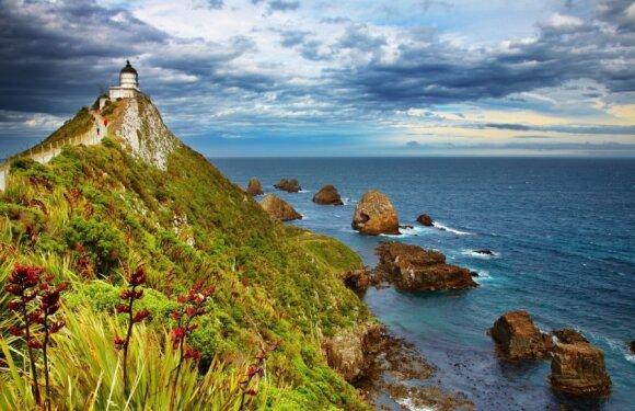 Nugget Point, Naujoji Zelandija
