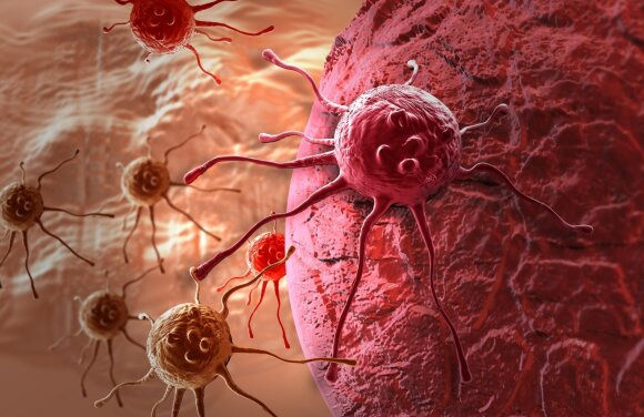 Paaiškino, kaip gyvybė yra išvis įmanoma, ir gavo Nobelį: kuo tai susiję su vaistais nuo vėžio