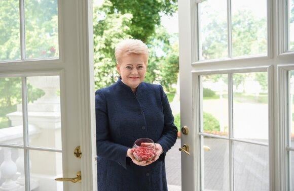 2017 06 01. Lietuvos Respublikos Prezidentė Dalia Grybauskaitė su žemuogėmis Prezidento rūmų sode