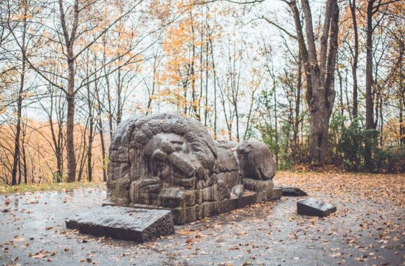 """Miegantis liūtas"" // Mangusto photos tell stories, VilniusGo nuotr."