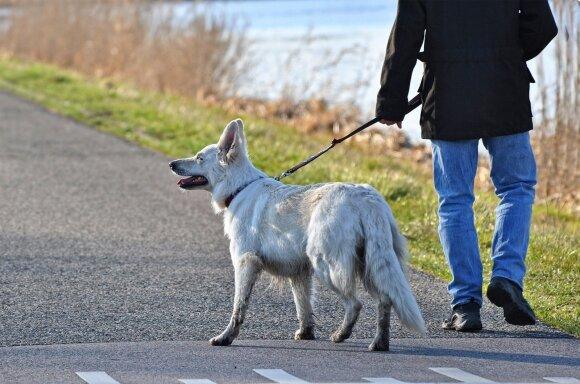 Šuo ir jo šeimininkas