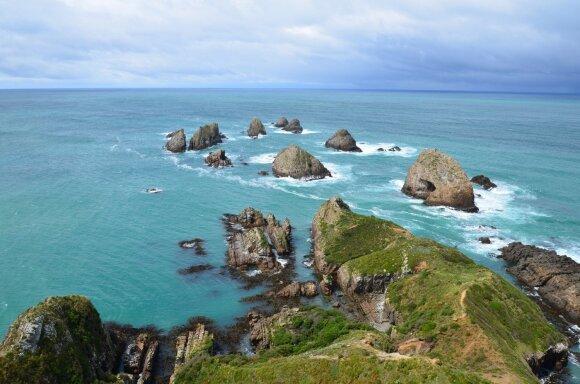 Laukinės pakrantės, Naujoji Zelandija