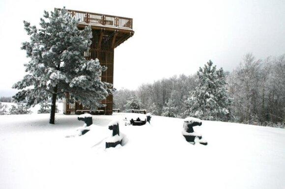 Apžvalgos bokštas ant aukščiausio Lietuvos taško - Aukštojo kalvos