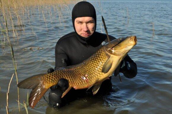 Žvejai povandeninkai norėtų daugiau prisidėti prie invazinių vėžių naikinimo
