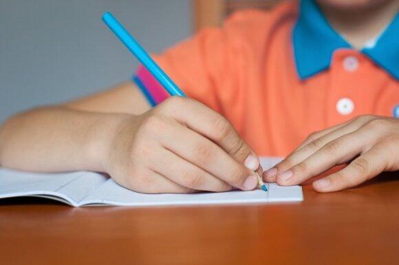 A.Landsbergienė pataria, kaip motyvuoti vaiką mokytis