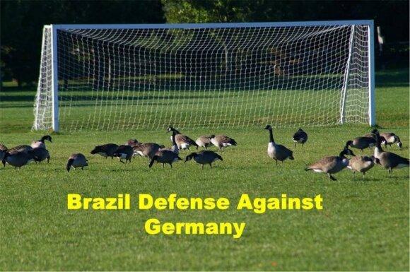 Po brazilų pralaimėjimo internete pasirodė pašaipūs memai