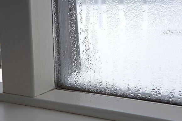 Ką daryti, kad nerasotų plastikiniai langai?