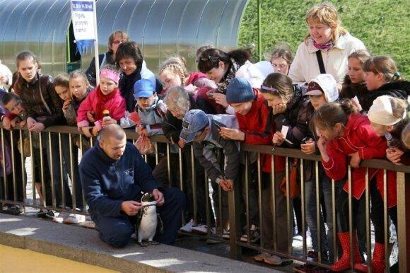 Ruoniukus pakrikštijęs Lietuvos jūrų muziejus laukia vaikų