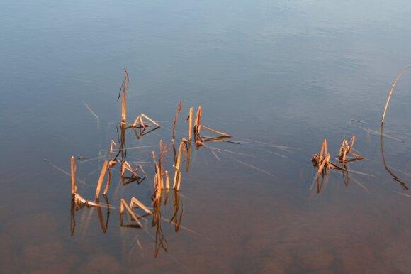 Atvėsęs ežerų vanduo - iki ledo užsidėjimo trūksta labai nedaug