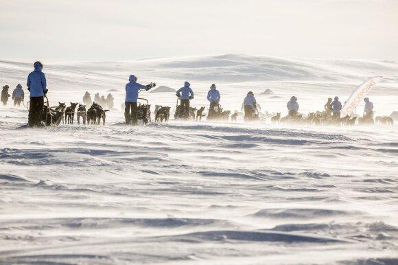 Poliarinė ekspedicija