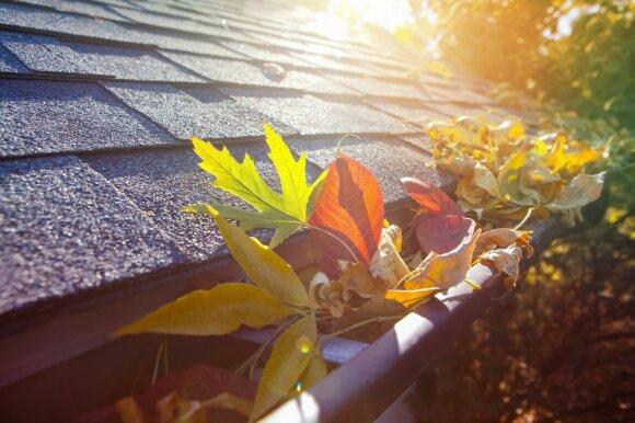 Pagrindiniai žingsniai, kaip paruošti vasarnamį žiemai