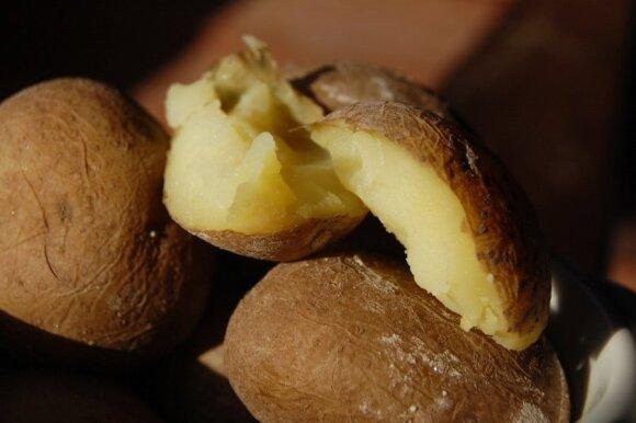Druskoje virtos bulvės