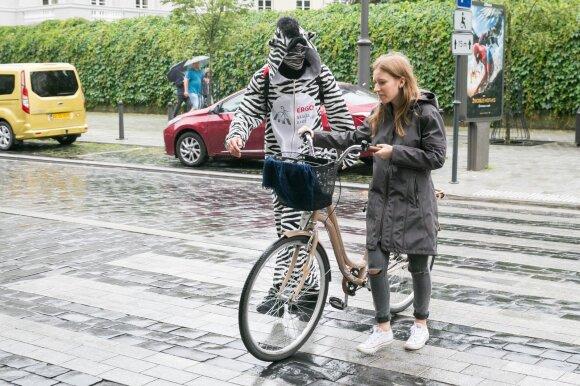 Per pėsčiųjų perėją dviratį reikia vestis