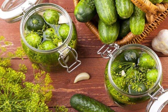 Norite užsiauginti daug ir nekarčių agurkų? Teks keisti jų tręšimo ir net skynimo įpročius