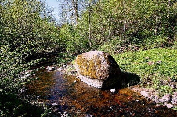 Rožių akmenį Jurkiškio take vietiniai vadina Puntuko vaiku, o geologai – Suomiu