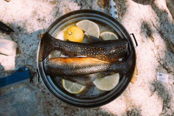 Žuvies ruošimas