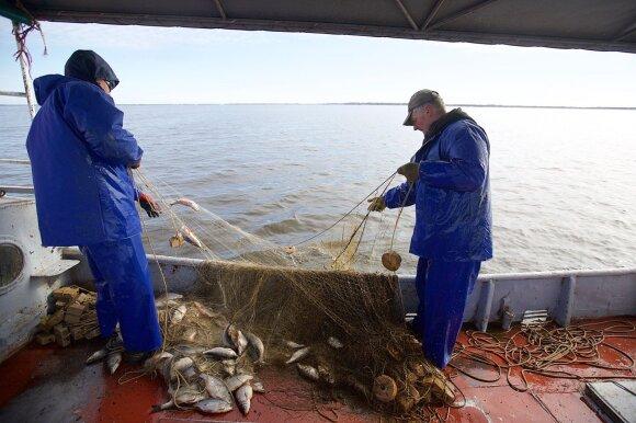 Žvejyba Kuršių mariose