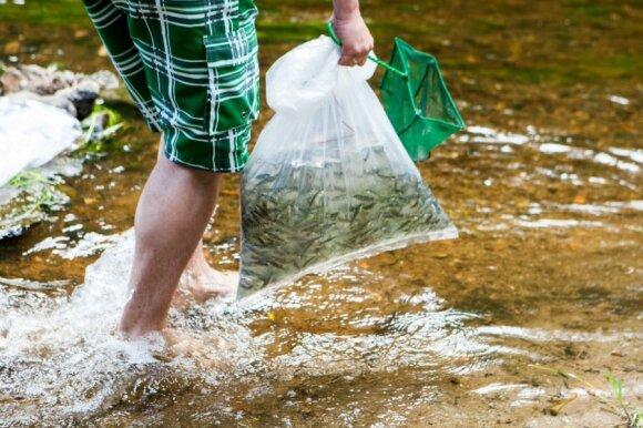 Paaiškino, kodėl ežeruose gali mažėti žuvų: jei nieko nedarysime, gali būti tik blogiau