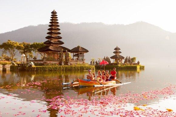Balis