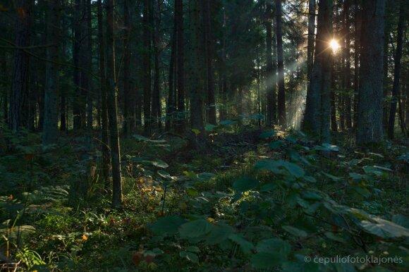 Atradimai saugomose teritorijose Lietuvoje: žavinga sezonų kaita ir cepelininiai debesys, po kurių ateina saulė