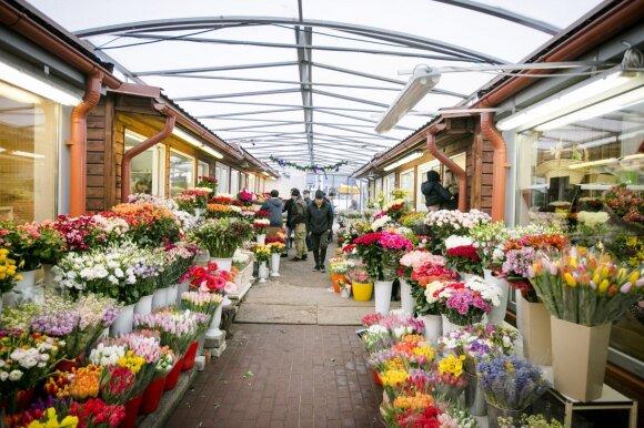 Pirkėją sunervino tulpių kainos: ar iš proto išsikraustė?