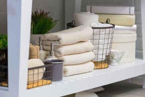 Kaip tvarkyti namus, kad jie netaptų bakterijų veisykla: sumažins tikimybę susirgti